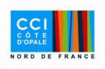 Logo CCI Calais