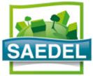 Logo SAEDEL